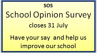 2015 School Opinion Survey